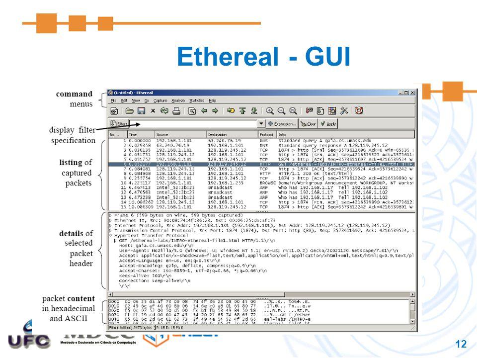 13 Ethereal - Execução 1.Inicie o web browser (Mozilla, IE).