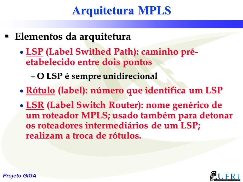 10 Projeto GIGA Arquitetura MPLS  Elementos da arquitetura  LSP (Label Swithed Path): caminho pré- etabelecido entre dois pontos – O LSP é sempre un