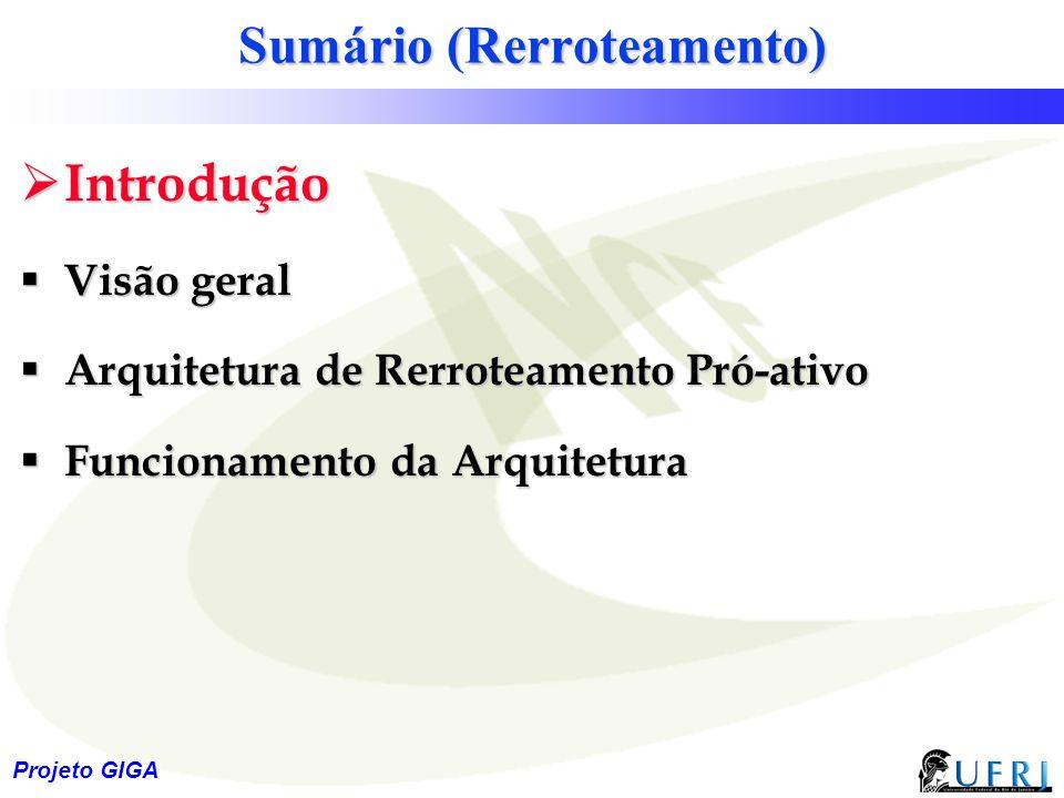 18 Projeto GIGA Sumário (Rerroteamento)  Introdução  Visão geral  Arquitetura de Rerroteamento Pró-ativo  Funcionamento da Arquitetura