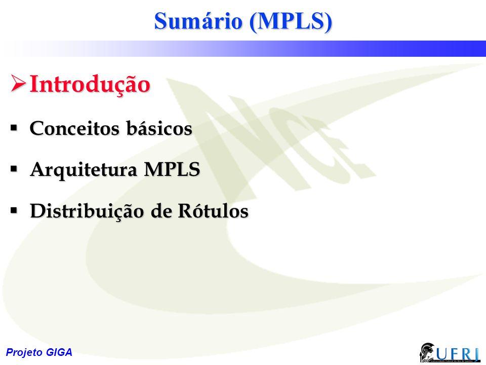 2 Sumário (MPLS)  Introdução  Conceitos básicos  Arquitetura MPLS  Distribuição de Rótulos