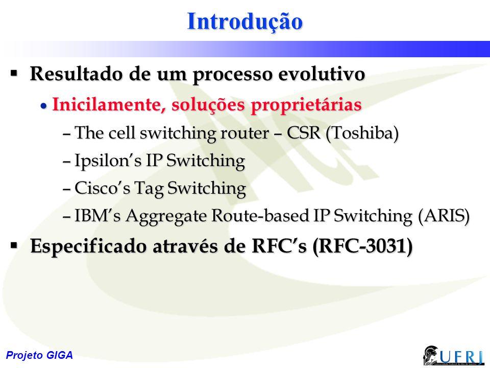 4 Projeto GIGA Introdução  Resultado de um processo evolutivo  Inicilamente, soluções proprietárias –The cell switching router – CSR (Toshiba) –Ipsi