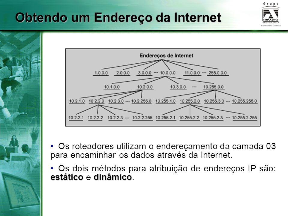 Obtendo um Endereço da Internet Os roteadores utilizam o endereçamento da camada 03 para encaminhar os dados através da Internet. estáticodinâmico Os