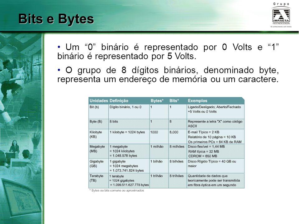 """Um """"0"""" binário é representado por 0 Volts e """"1"""" binário é representado por 5 Volts. O grupo de 8 dígitos binários, denominado byte, representa um ende"""