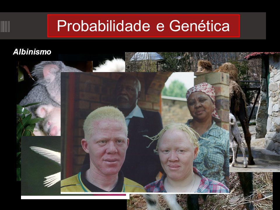 Probabilidade e Genética Albinismo
