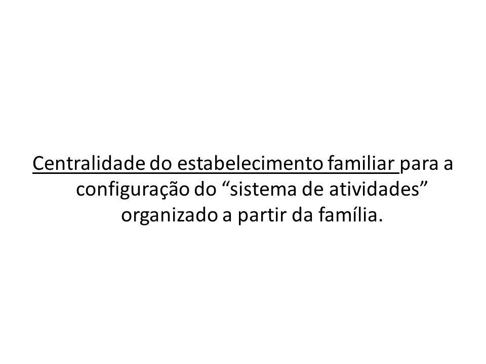"""Centralidade do estabelecimento familiar para a configuração do """"sistema de atividades"""" organizado a partir da família."""
