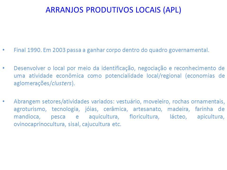ARRANJOS PRODUTIVOS LOCAIS (APL) Final 1990. Em 2003 passa a ganhar corpo dentro do quadro governamental. Desenvolver o local por meio da identificaçã