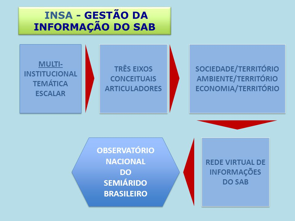 INSA - GESTÃO DA INFORMAÇÃO DO SAB TRÊS EIXOS CONCEITUAIS ARTICULADORES SOCIEDADE/TERRITÓRIO AMBIENTE/TERRITÓRIO ECONOMIA/TERRITÓRIO SOCIEDADE/TERRITÓ