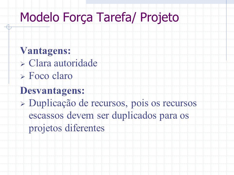 Vantagens:  Clara autoridade  Foco claro Desvantagens:  Duplicação de recursos, pois os recursos escassos devem ser duplicados para os projetos dif