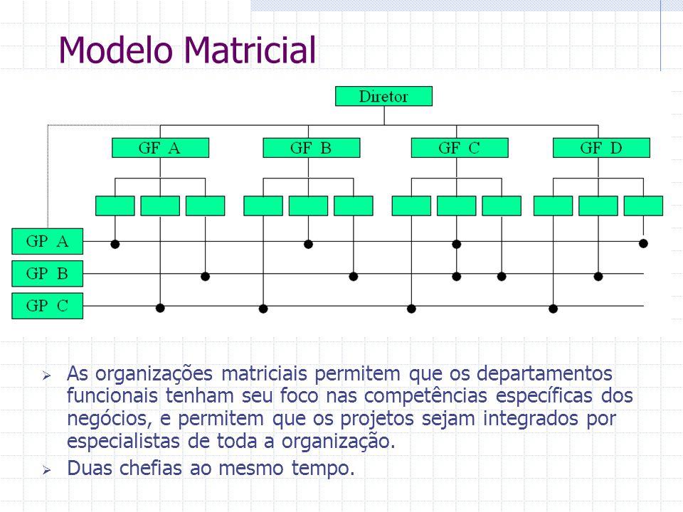 Modelo Matricial  As organizações matriciais permitem que os departamentos funcionais tenham seu foco nas competências específicas dos negócios, e pe
