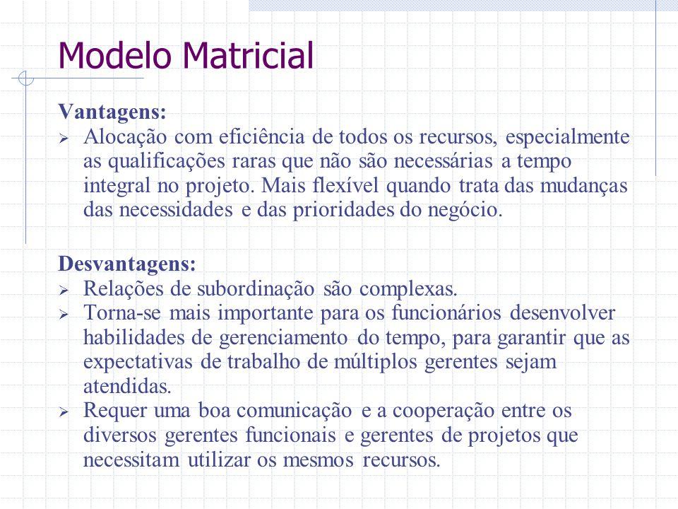 Vantagens:  Alocação com eficiência de todos os recursos, especialmente as qualificações raras que não são necessárias a tempo integral no projeto. M