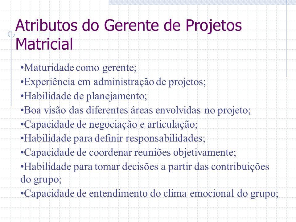 Atributos do Gerente de Projetos Matricial Maturidade como gerente; Experiência em administração de projetos; Habilidade de planejamento; Boa visão da