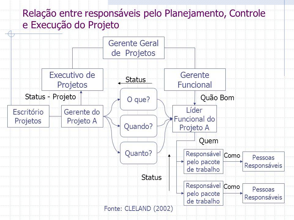 Fonte: CLELAND (2002) Relação entre responsáveis pelo Planejamento, Controle e Execução do Projeto Gerente Geral de Projetos Executivo de Projetos Ger