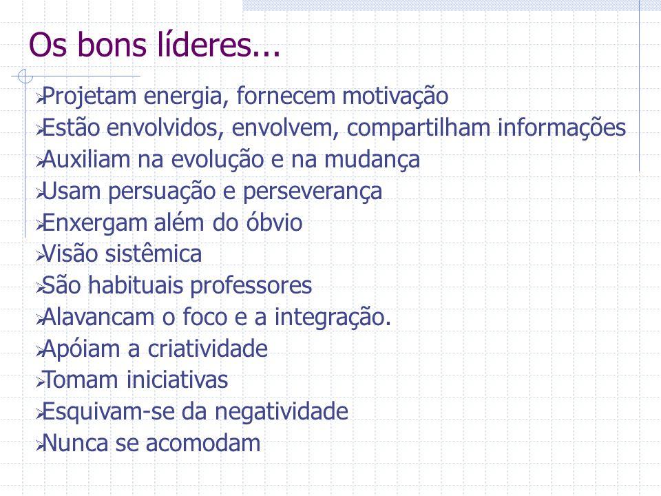 Os bons líderes...  Projetam energia, fornecem motivação  Estão envolvidos, envolvem, compartilham informações  Auxiliam na evolução e na mudança 