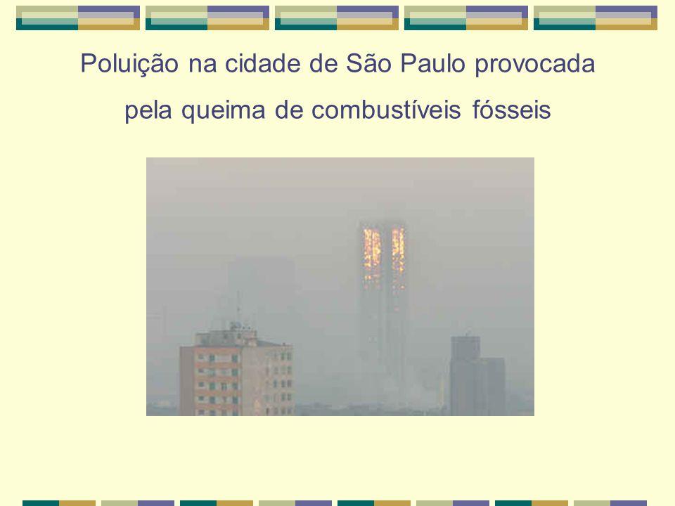 Poluição na cidade de São Paulo provocada pela queima de combustíveis fósseis