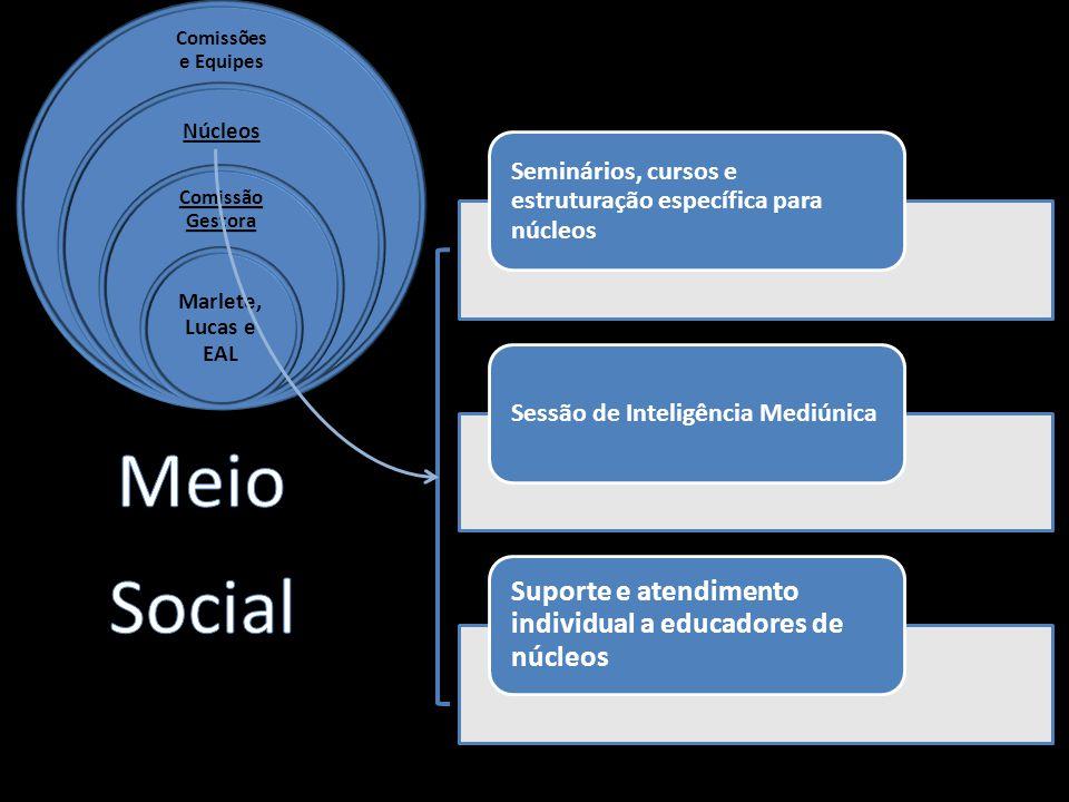 Seminários, cursos e estruturação específica para núcleos Sessão de Inteligência Mediúnica Suporte e atendimento individual a educadores de núcleos