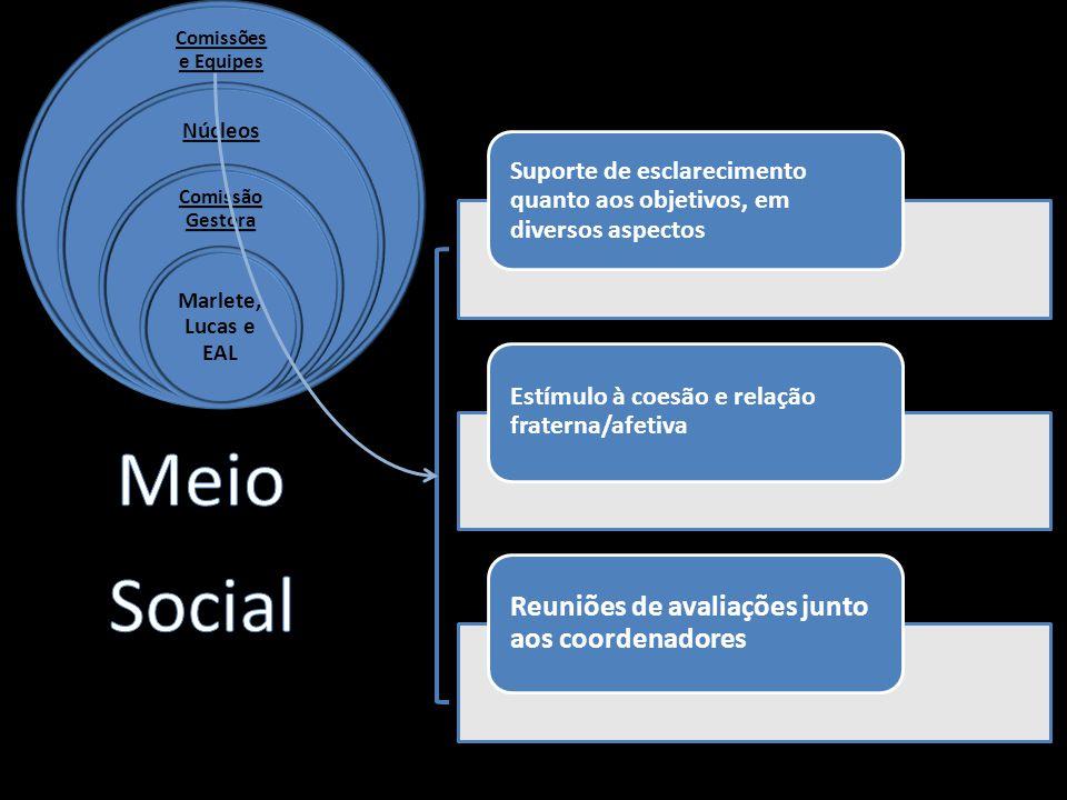 Suporte de esclarecimento quanto aos objetivos, em diversos aspectos Estímulo à coesão e relação fraterna/afetiva Reuniões de avaliações junto aos coordenadores
