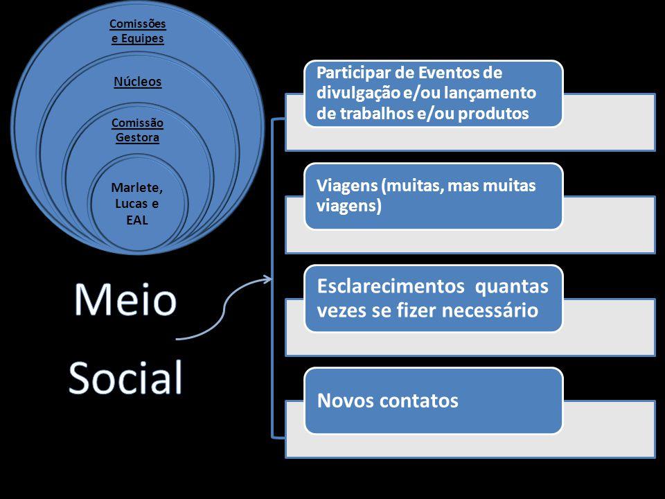 Estruturação dos pilares da COMGE e Grupos de Apoio (comissões e equipes).
