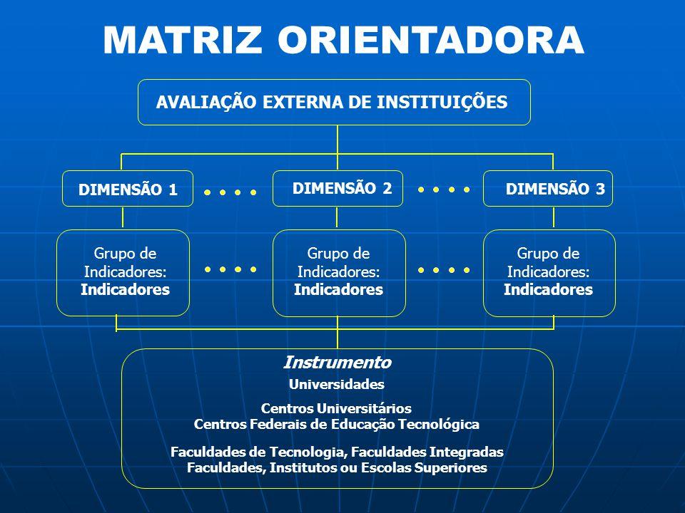 MATRIZ ORIENTADORA AVALIAÇÃO EXTERNA DE INSTITUIÇÕES DIMENSÃO 1 DIMENSÃO 2 DIMENSÃO 3 Grupo de Indicadores: Indicadores Universidades Instrumento Grup