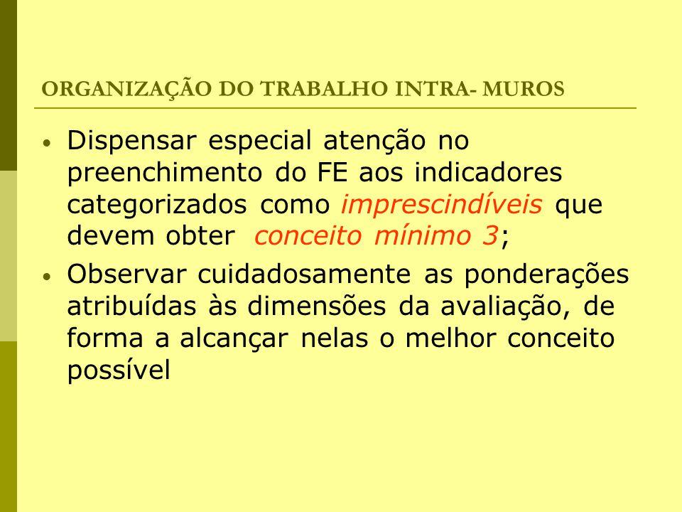 ORGANIZAÇÃO DO TRABALHO INTRA- MUROS Dispensar especial atenção no preenchimento do FE aos indicadores categorizados como imprescindíveis que devem ob