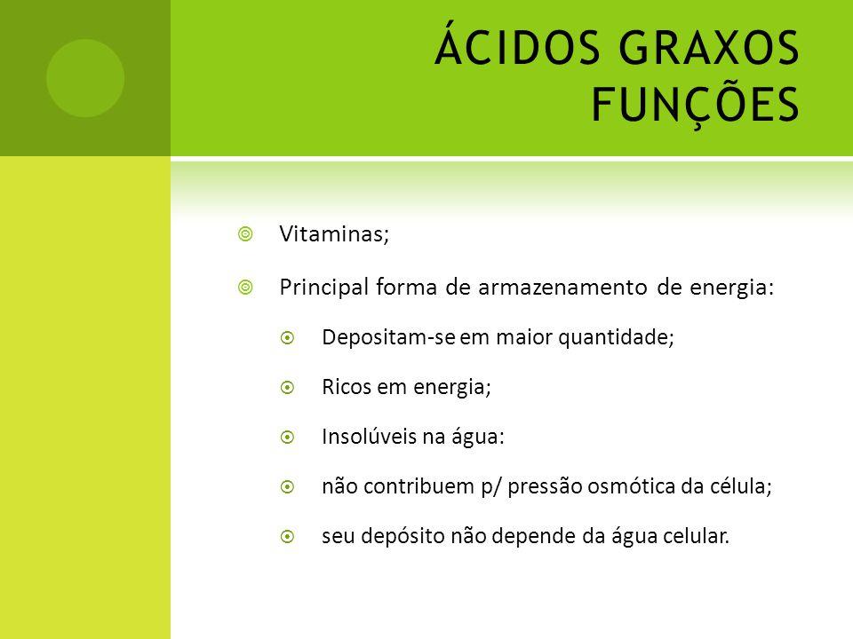 ÁCIDOS GRAXOS FUNÇÕES  Vitaminas;  Principal forma de armazenamento de energia:  Depositam-se em maior quantidade;  Ricos em energia;  Insolúveis