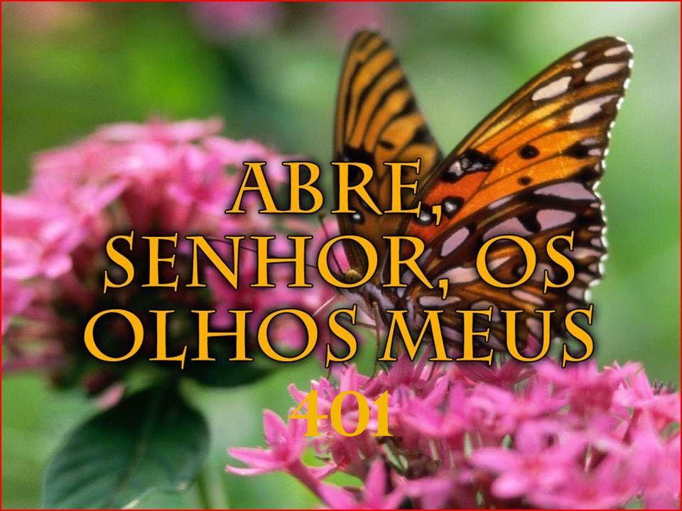 Aqui vais ouvir toda a criação e os céus glorificar, Ao Seu Santo Deus Sede Samambaia Norte