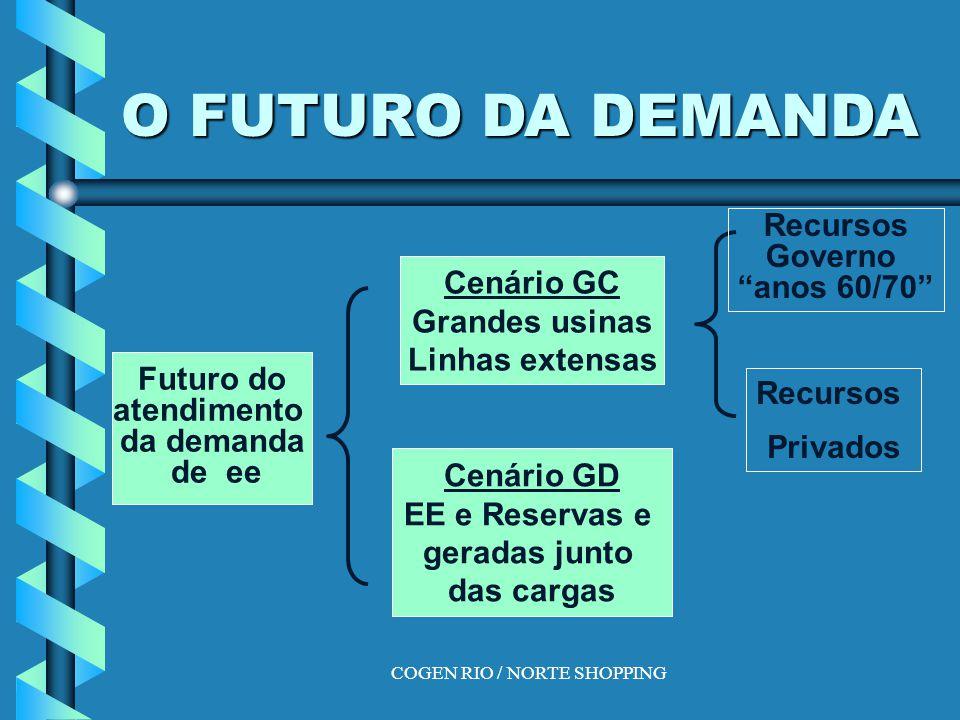 O FUTURO DA DEMANDA Futuro do atendimento da demanda de ee Cenário GC Grandes usinas Linhas extensas Cenário GD EE e Reservas e geradas junto das cargas Recursos Governo anos 60/70 Recursos Privados