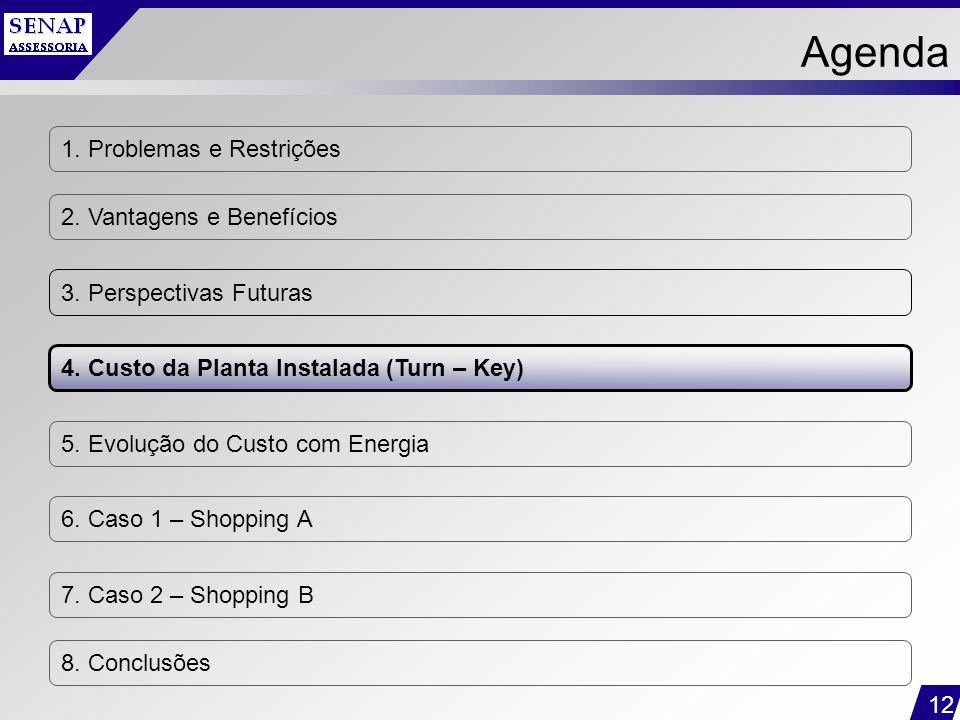 12 1. Problemas e Restrições 2. Vantagens e Benefícios 3. Perspectivas Futuras 4. Custo da Planta Instalada (Turn – Key) 5. Evolução do Custo com Ener