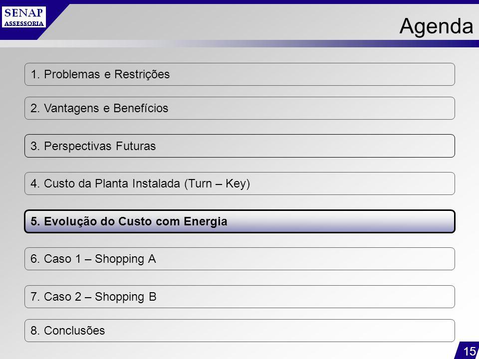 15 1. Problemas e Restrições 2. Vantagens e Benefícios 3. Perspectivas Futuras 4. Custo da Planta Instalada (Turn – Key) 5. Evolução do Custo com Ener