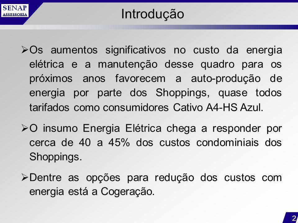 2 Introdução  Os aumentos significativos no custo da energia elétrica e a manutenção desse quadro para os próximos anos favorecem a auto-produção de