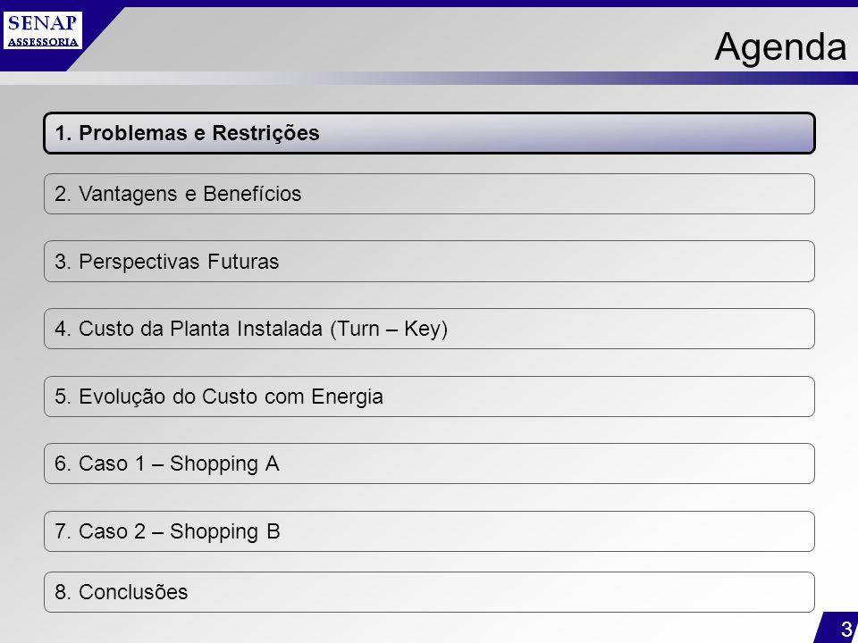 3 Agenda 1. Problemas e Restrições 2. Vantagens e Benefícios 3. Perspectivas Futuras 4. Custo da Planta Instalada (Turn – Key) 5. Evolução do Custo co