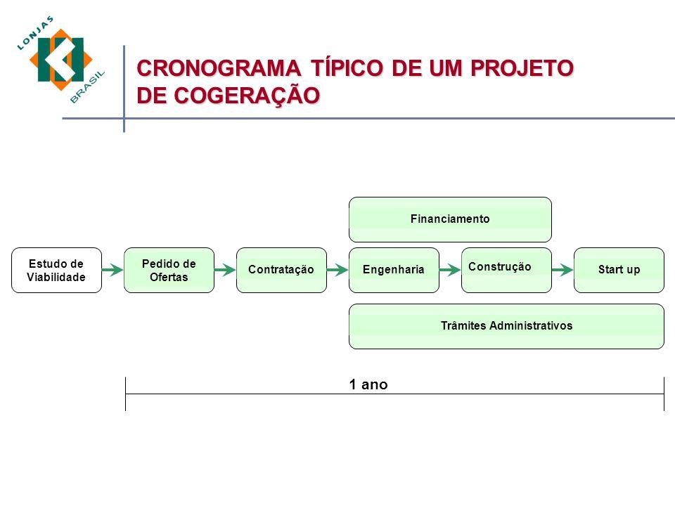 CRONOGRAMA TÍPICO DE UM PROJETO DE COGERAÇÃO 1 ano Estudo de Viabilidade Pedido de Ofertas ContrataçãoFinanciamentoStart upTrâmites Administrativos Construção Engenharia