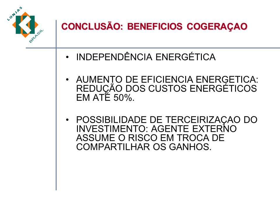 INDEPENDÊNCIA ENERGÉTICA AUMENTO DE EFICIENCIA ENERGETICA: REDUÇÃO DOS CUSTOS ENERGÉTICOS EM ATÉ 50%.