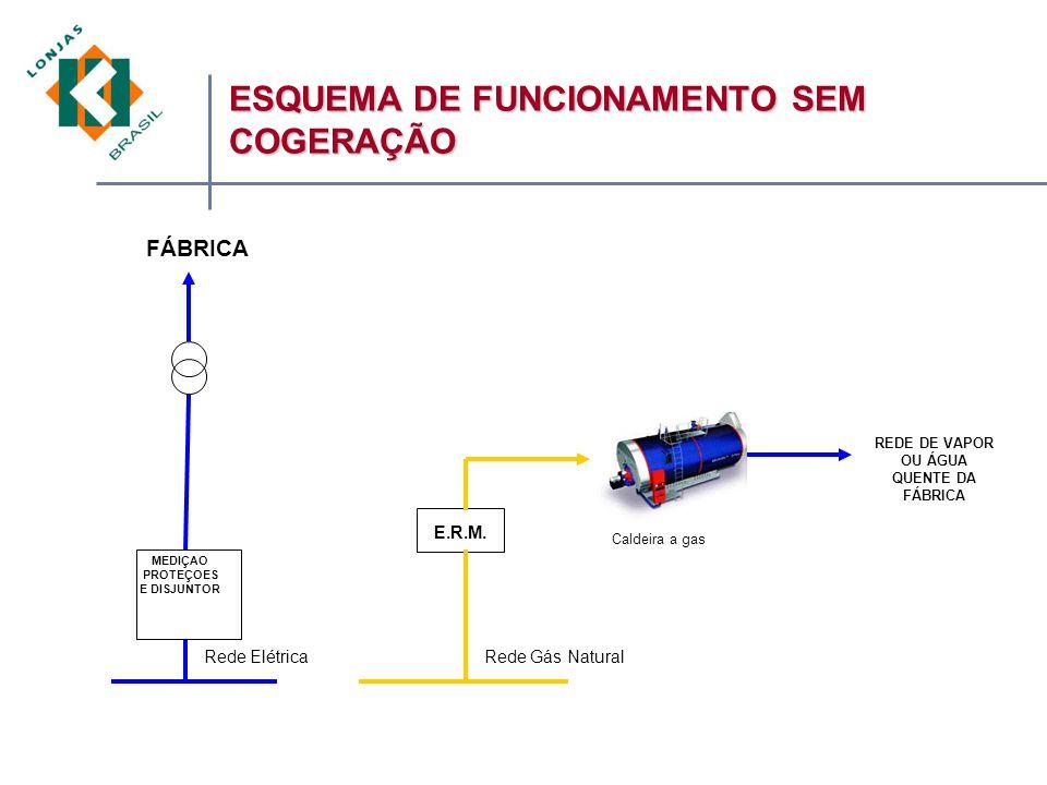 MEDIÇAO PROTEÇOES E DISJUNTOR Rede ElétricaRede Gás Natural FÁBRICA REDE DE VAPOR OU ÁGUA QUENTE DA FÁBRICA E.R.M.