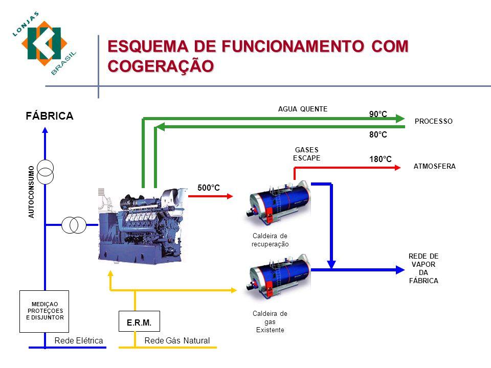 MEDIÇAO PROTEÇOES E DISJUNTOR Rede ElétricaRede Gás Natural FÁBRICA Caldeira de recuperação REDE DE VAPOR DA FÁBRICA E.R.M.