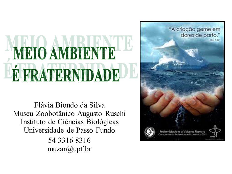 Flávia Biondo da Silva Museu Zoobotânico Augusto Ruschi Instituto de Ciências Biológicas Universidade de Passo Fundo 54 3316 8316 muzar@upf.br