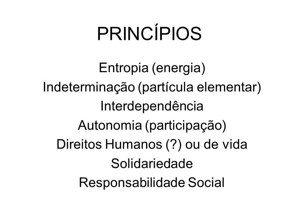 Entropia (energia) Indeterminação (partícula elementar) Interdependência Autonomia (participação) Direitos Humanos (?) ou de vida Solidariedade Respon