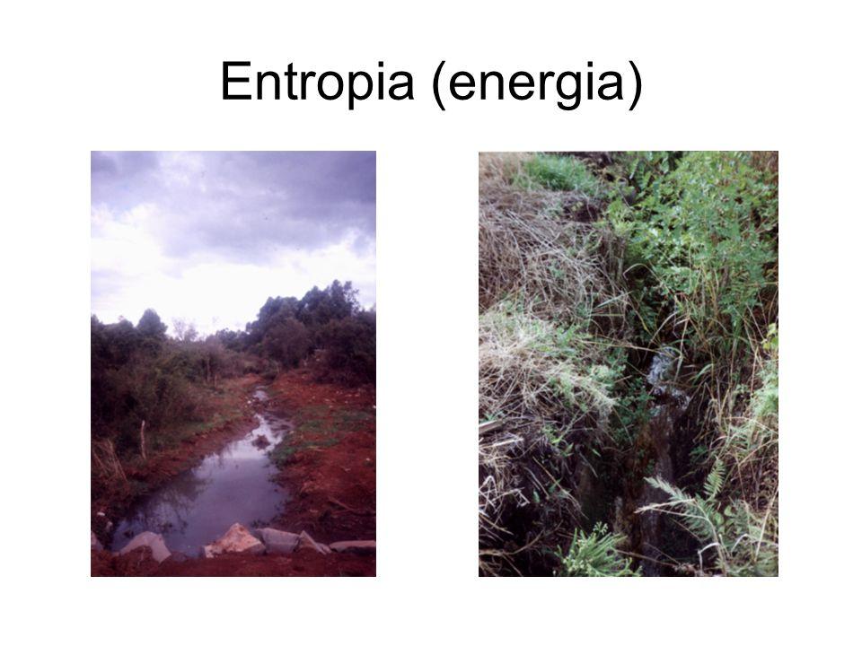 Entropia (energia)