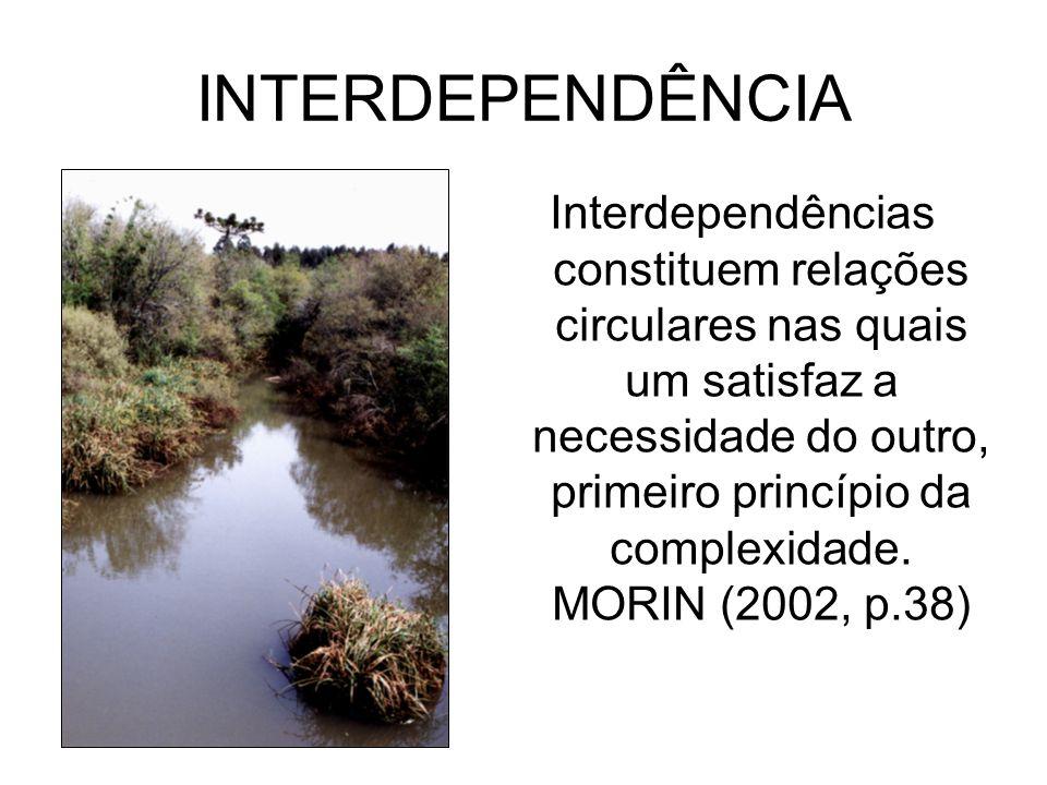 INTERDEPENDÊNCIA Interdependências constituem relações circulares nas quais um satisfaz a necessidade do outro, primeiro princípio da complexidade. MO