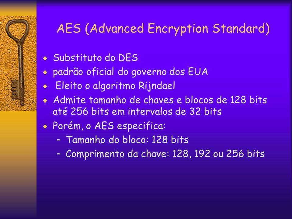 AES (Advanced Encryption Standard)  Substituto do DES  padrão oficial do governo dos EUA  Eleito o algoritmo Rijndael  Admite tamanho de chaves e blocos de 128 bits até 256 bits em intervalos de 32 bits  Porém, o AES especifica: –Tamanho do bloco: 128 bits –Comprimento da chave: 128, 192 ou 256 bits