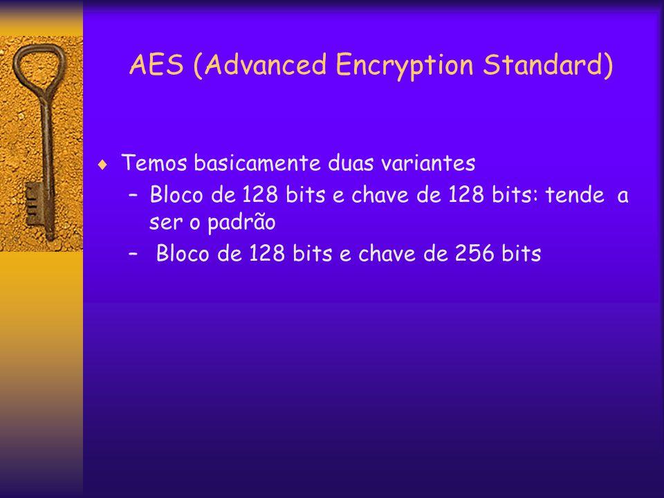 AES (Advanced Encryption Standard)  Temos basicamente duas variantes –Bloco de 128 bits e chave de 128 bits: tende a ser o padrão – Bloco de 128 bits e chave de 256 bits
