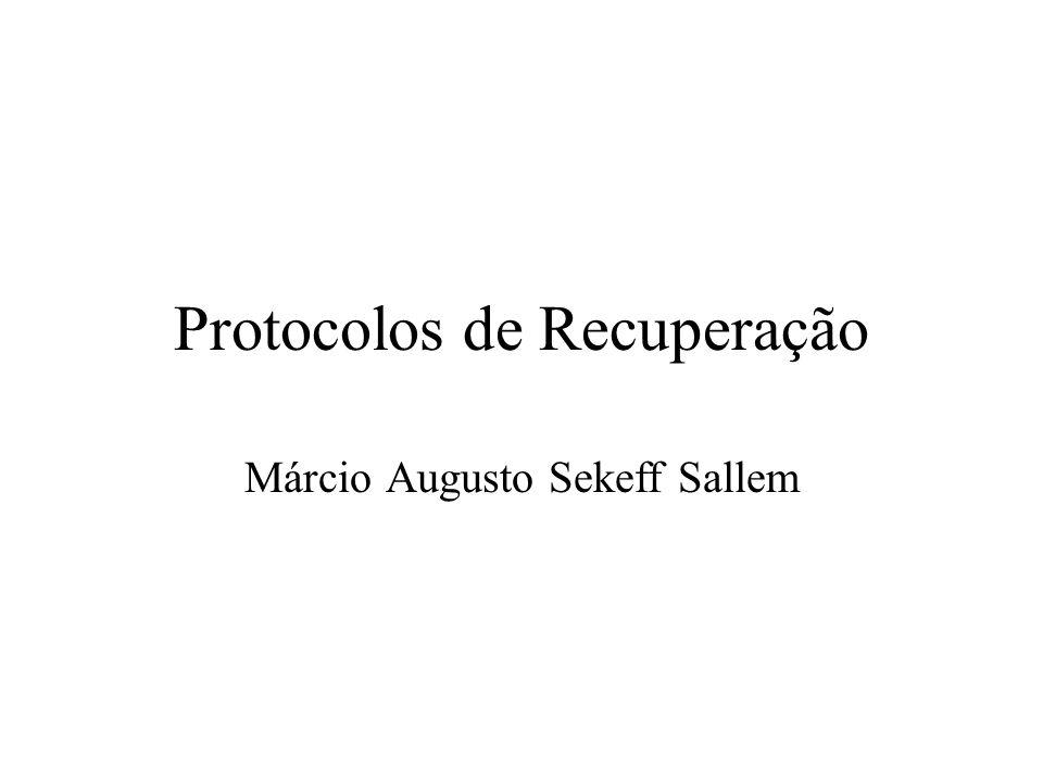 Protocolos de Recuperação Márcio Augusto Sekeff Sallem