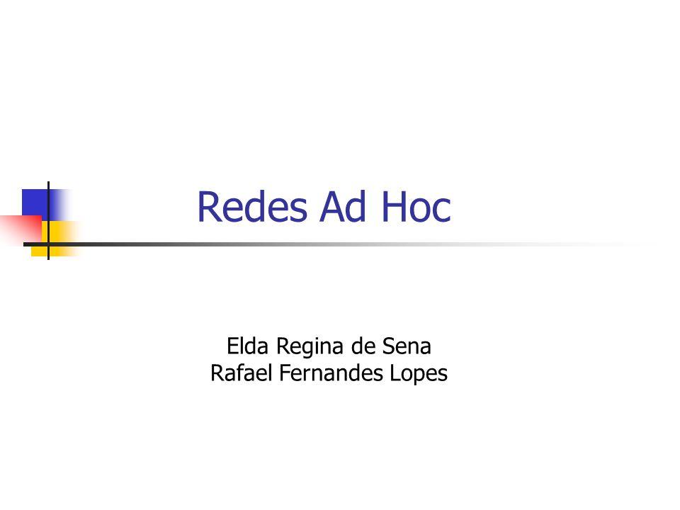 Elda Regina de Sena Rafael Fernandes Lopes Redes Ad Hoc