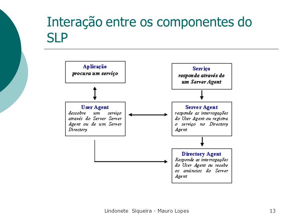 Lindonete Siqueira - Mauro Lopes13 Interação entre os componentes do SLP