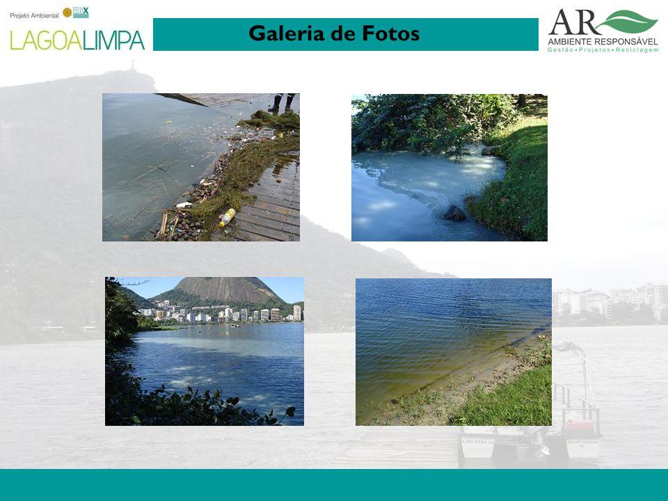 Pag. 7 Galeria de Fotos