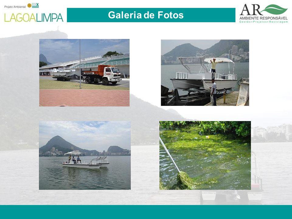 Pag. 11 Galeria de Fotos