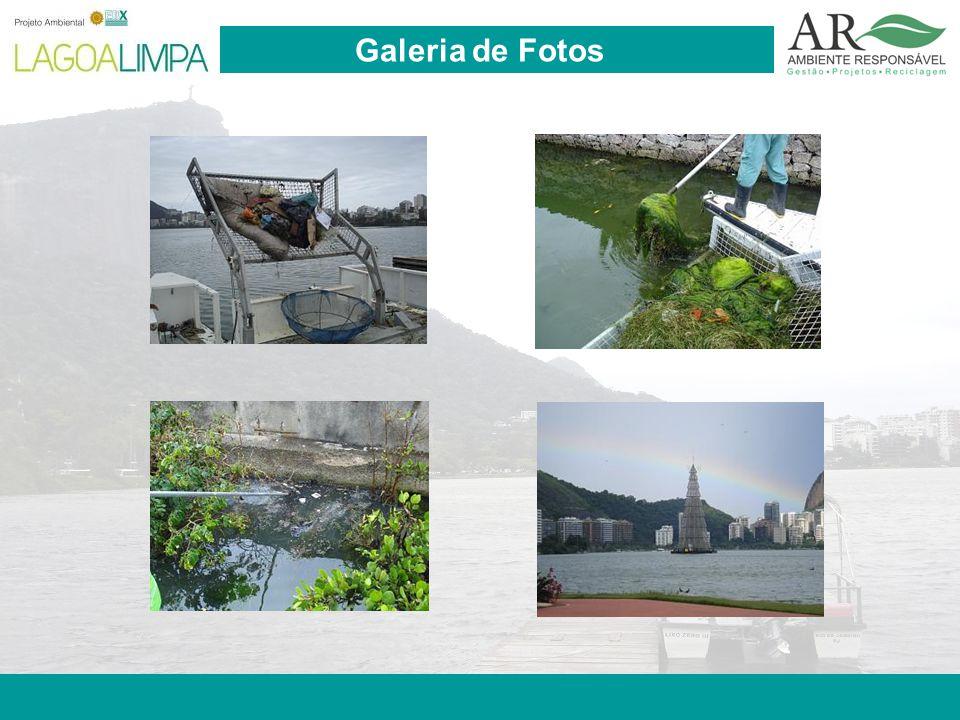 Pag. 13 Galeria de Fotos
