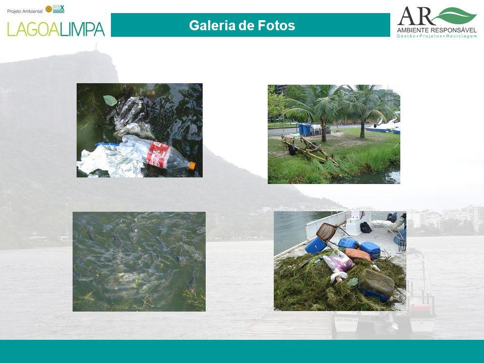 Pag. 15 Galeria de Fotos