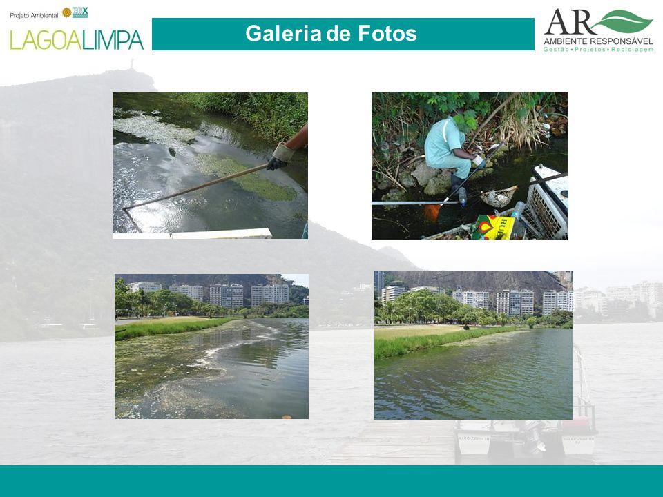Pag. 19 Galeria de Fotos
