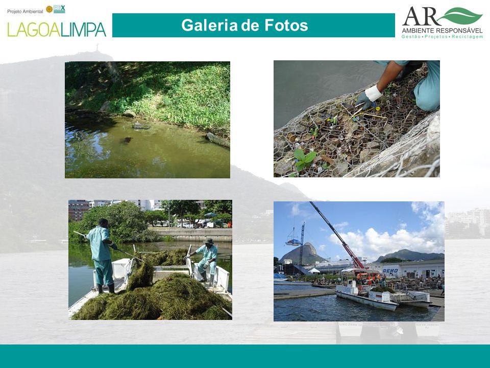 Pag. 21 Galeria de Fotos