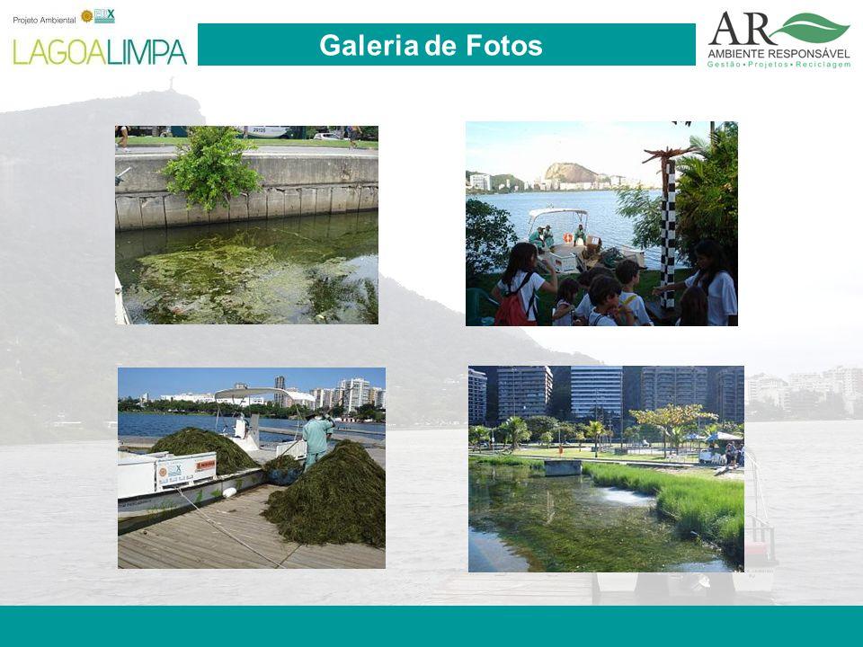 Pag. 23 Galeria de Fotos